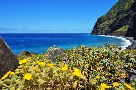 Остров Мадейра-островът на цветята, полети от Барселона